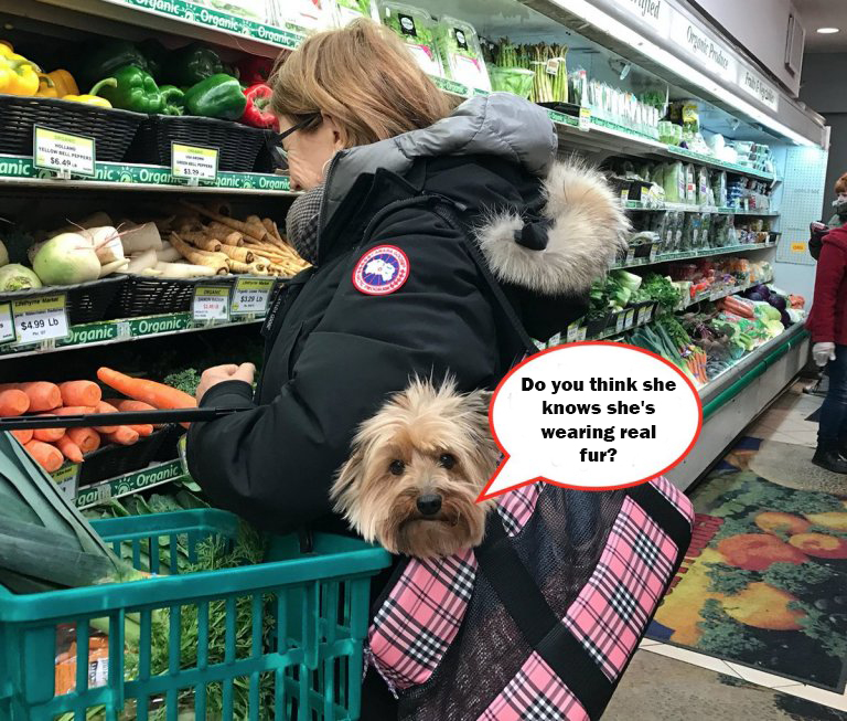 Canada Goose Customers Are Unzipping & Donating The Fur Trim