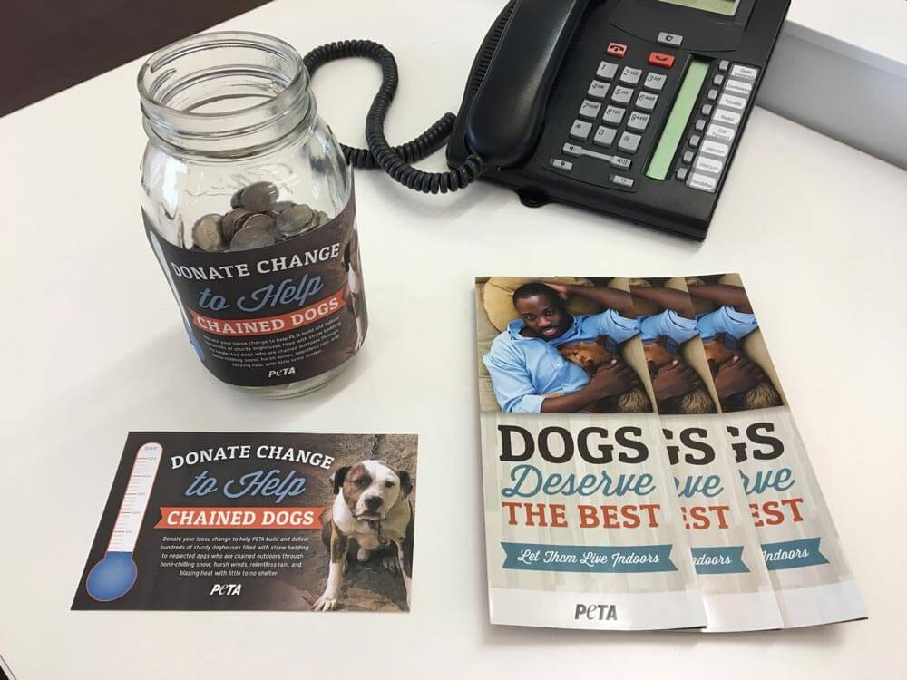 Change-for-Chained-dogs-fundraising-image
