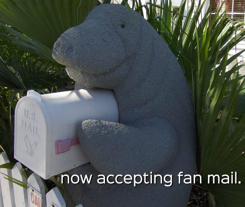 manatee appreciation day: manatee mailbox