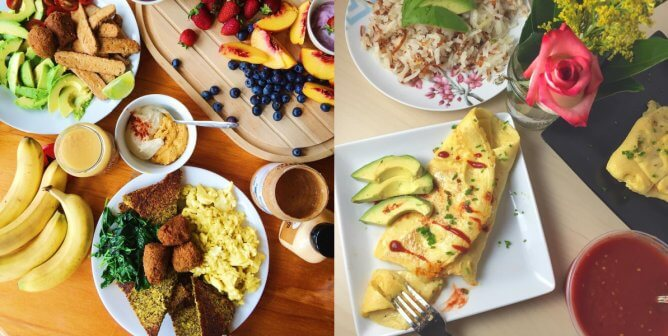 The Most Incredible Things You Can Do With Follow Your Heart's VeganEgg