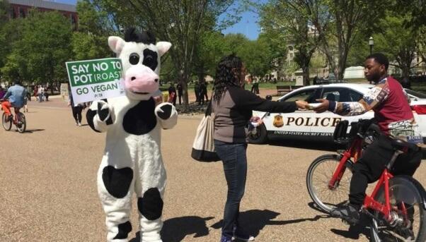 PETA at 420 demonstration in Washington, D.C.