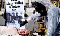 PETA Founder Endures Public 'Torture' in Protest