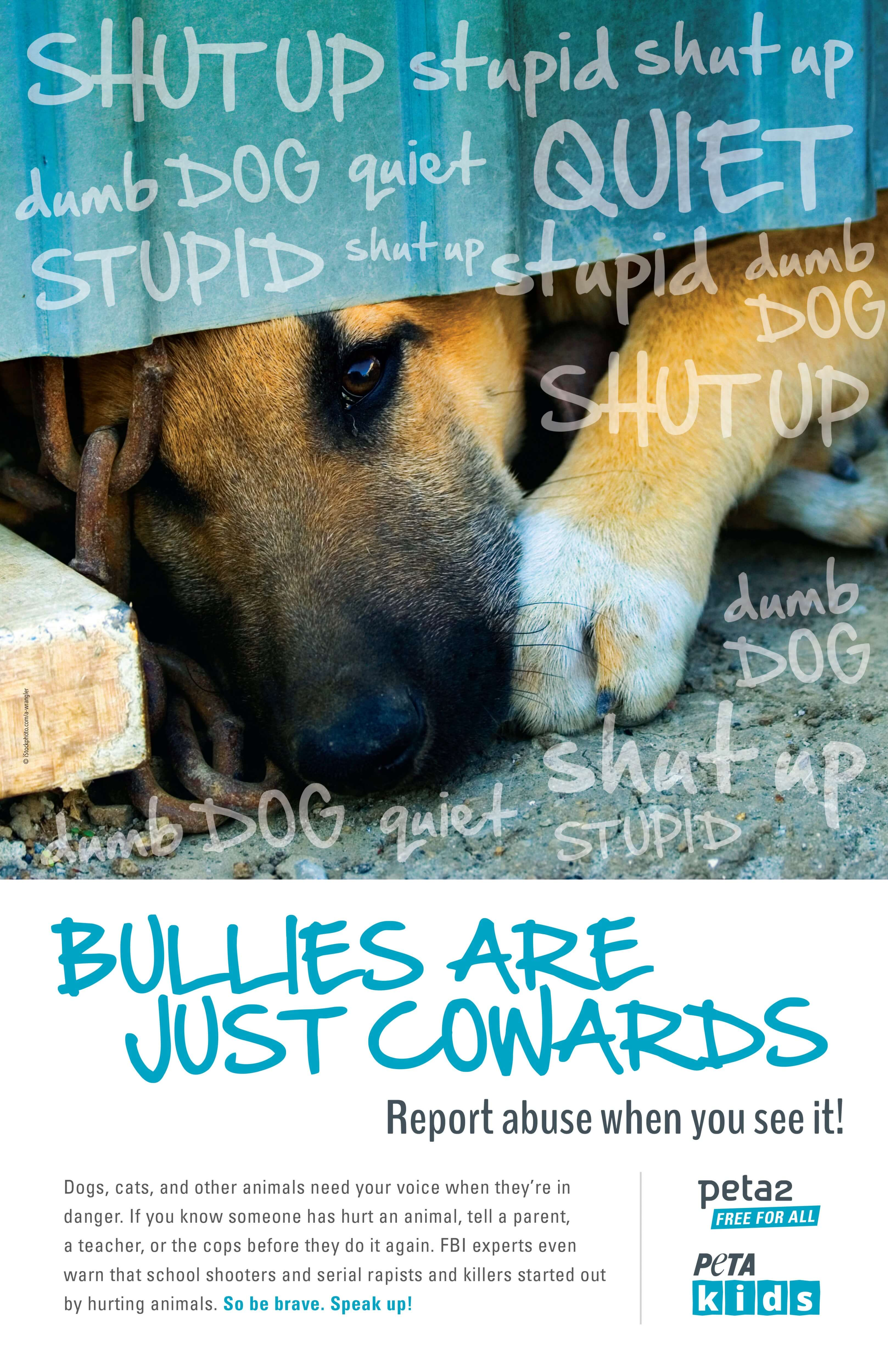 There S An Epidemic Of Youth Violence Against Animals Peta