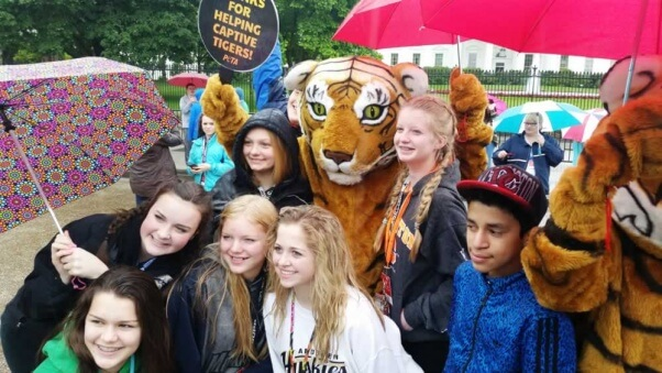 Dancing tiger demo at White House