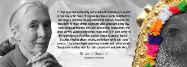 GodsInShackles-JaneGoodall-Endorsement-V1