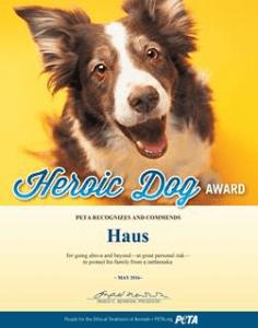 Haus heroci dog award