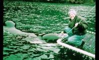 Marine Mammals Lose Great Friend Mark Berman, 'The Bermanator'
