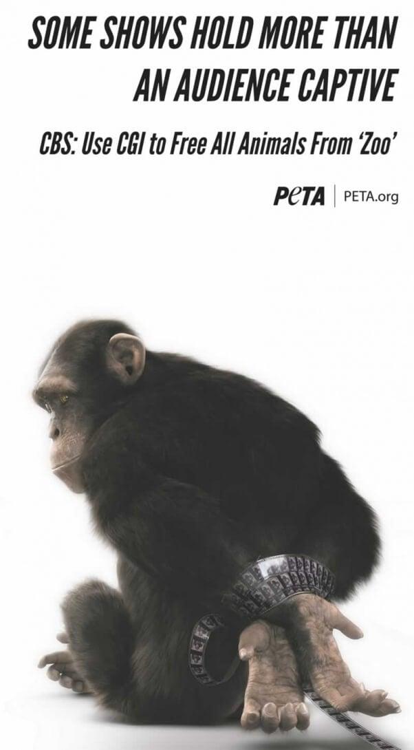 AFTV chimp ad_LATimes_fullpage10x21 5_300croppedMORE
