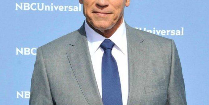 Arnold Schwarzenegger Feels 'Fantastic' After Saying 'Hasta la Vista' to Meat