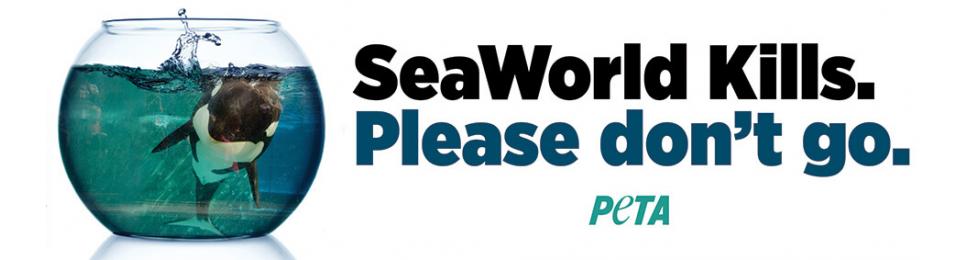 SeaWorld Kills: Please Don't Go