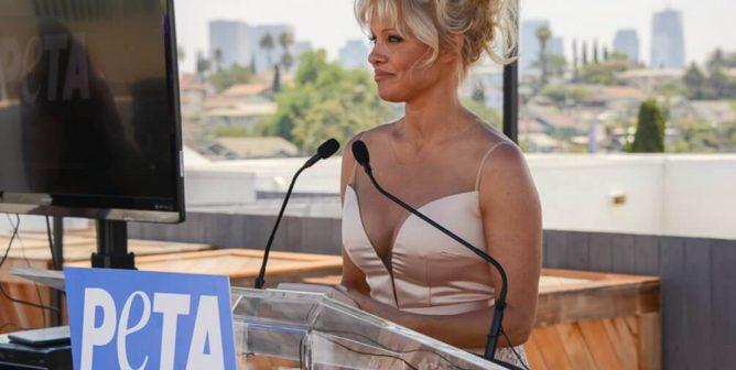Pamela Anderson Thanks the World Health Organization: 'Breast Is Best'
