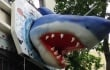 Why Is a Huge Shark Sticking Out of PETA's D.C. Office Building?