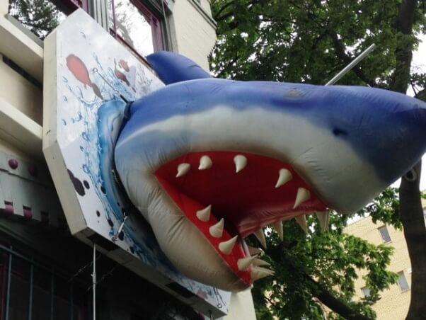 Shark on PETA D.C. office building