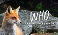 "Check Out peta2's 2016 Summer Campaign: ""Who Are You Wearing?"""