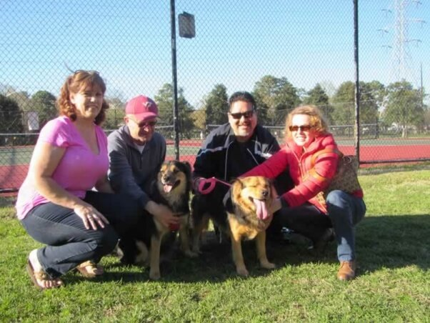 Buddy and Shelby with their new families