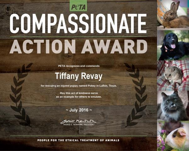 Compassionate Action_Tiffany Revay