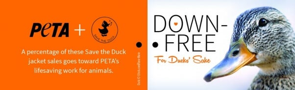 Save the Duck Hang Tags_Outside