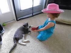 catgirl 2