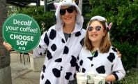 'Cows' to Tell Starbucks Drinkers: 'Decalf' Your Latte
