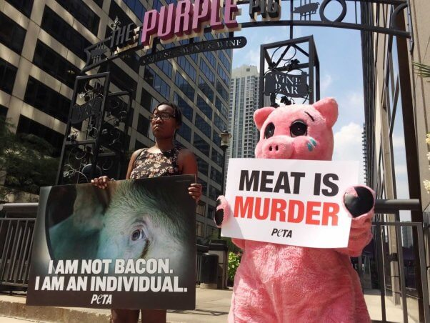 Purple Pig demo in Chicago