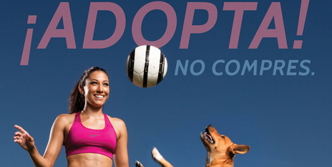 Christen Press: ¡Adopta! No compres