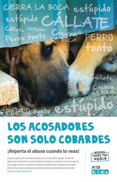 STW_Poster_Spanish_300-page-001