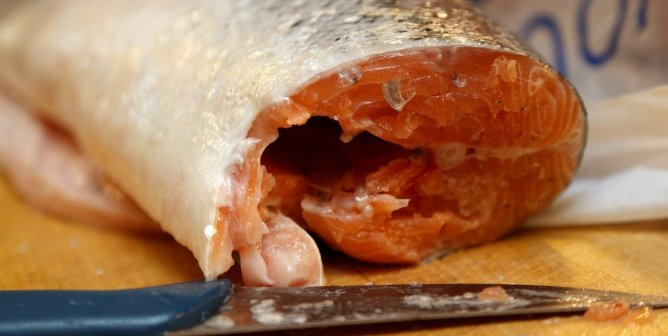 Surprise! Even Fancy Fish Dinners Come With a Garnishing of Worms