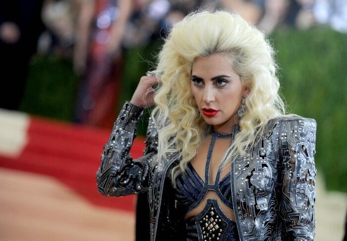 Image result for 10 Reasons Why Lady Gaga Should Include Some Vegan Recipes in Her Cookbook