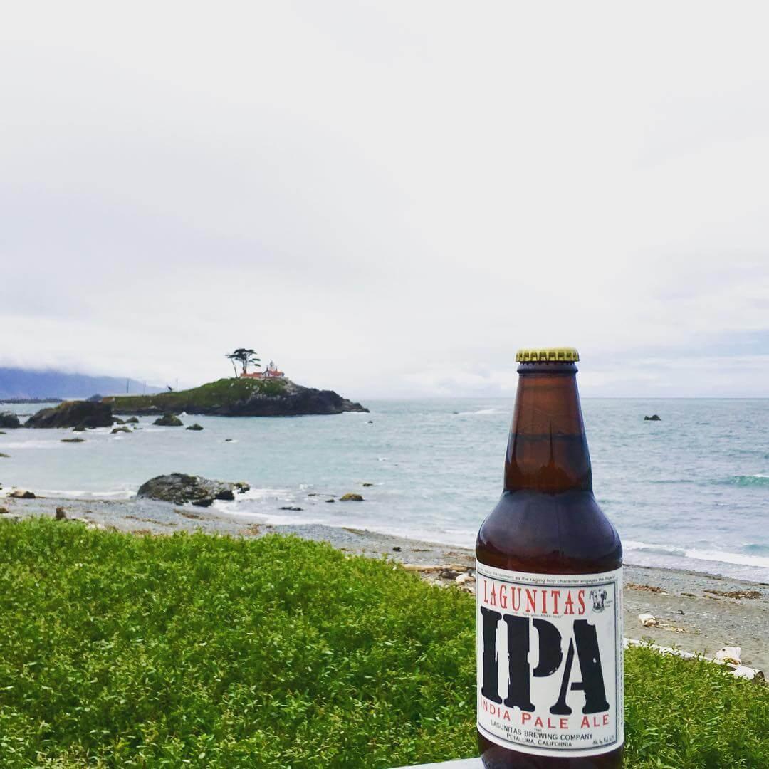lagunitas ipa vegan beer