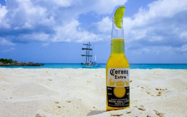 vegan beer corona