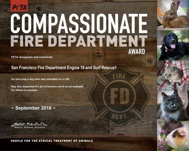 compassionate-fire-dept_e18sr1