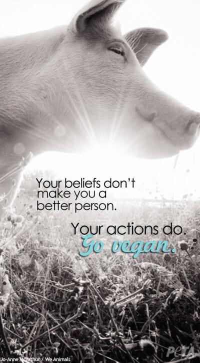 beliefs-vegan-peta-background-final