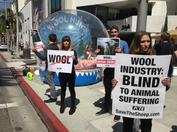 Anti-wool snow globe demo in Beverly Hills
