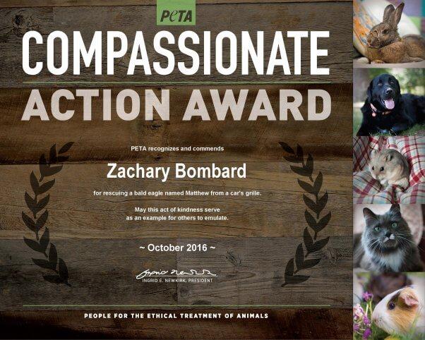 compassionate-action_zachary-bombard