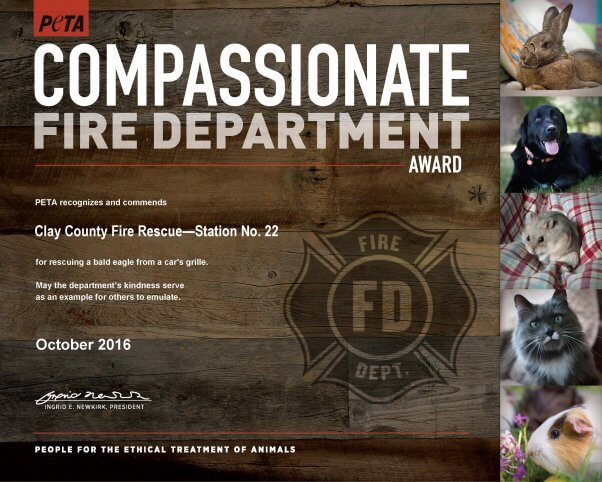 compassionate-fire-dept_clay-county-fire-rescue-station-22