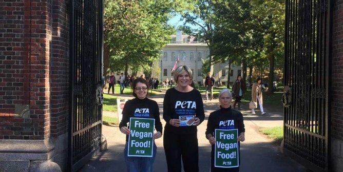 PETA Hands Out Vegan Ice Cream as Harvard Dining-Hall Staff Strikes