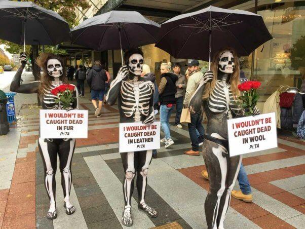 Skeleton demo in Seattle