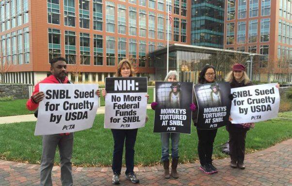 SNBL protest