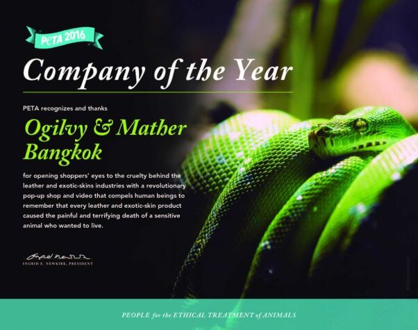 PETA 2016 Company of the Year certificate
