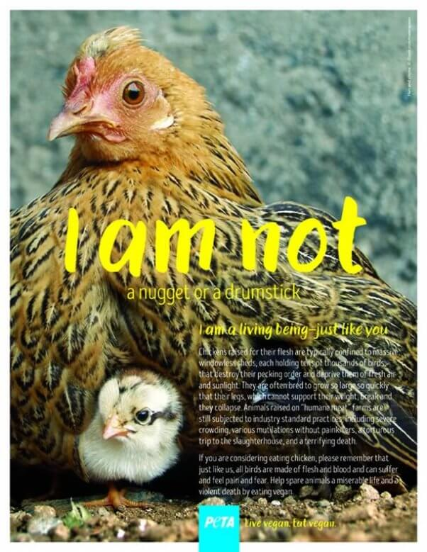 "PETA's holiday campaign 2016 - ""I Am Not..."""