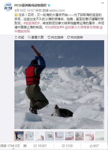 Screenshot of social media post from PETA Asia