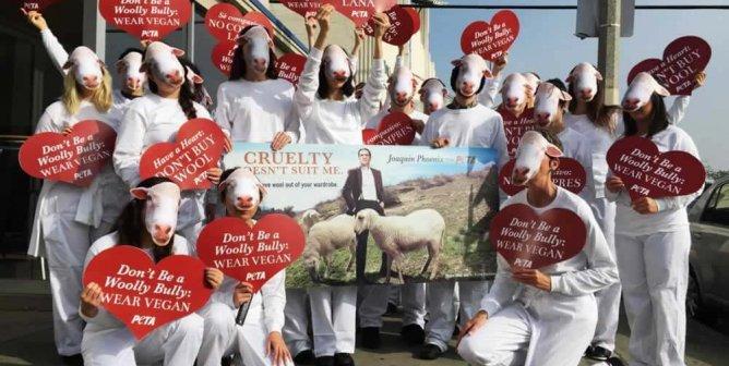 'Sheep' Flock to the Unveiling of Joaquin Phoenix's New PETA Ad