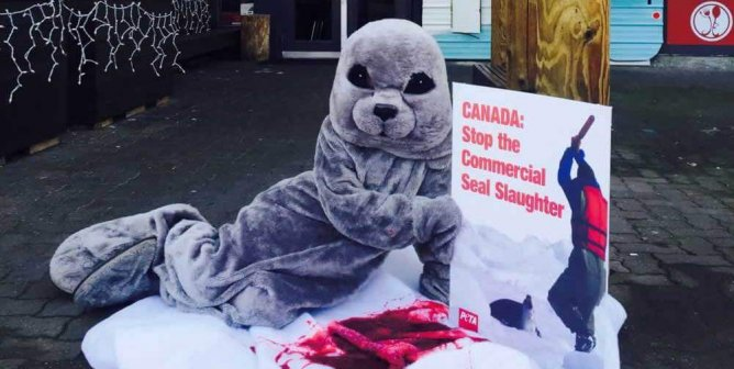 'Seal' Makes a 'Bloody' Splash in Restaurant Protest