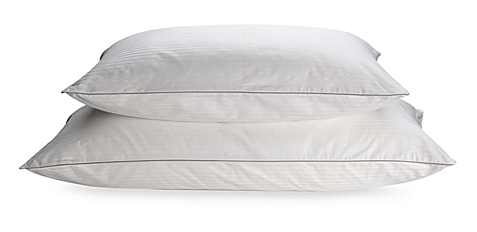 Beautify Your Home With Vegan Items From Bed Bath Amp Beyond