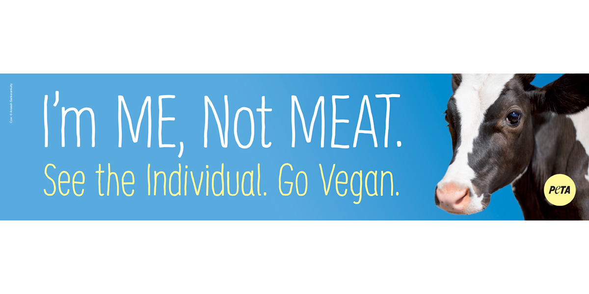 I'm ME, Not MEAT' Billboard Aims to Honor Cows Killed in Truck Crash