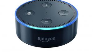Alexa, Go Vegan! Simplify Your Vegan Lifestyle With Amazon Echo