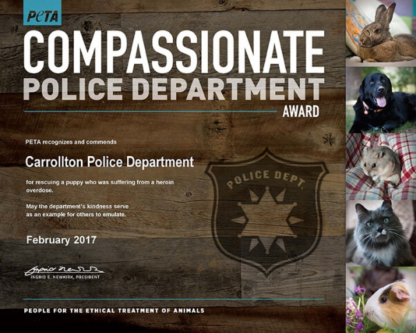 puppy heroin overdose rescue nets compassion award for TX police