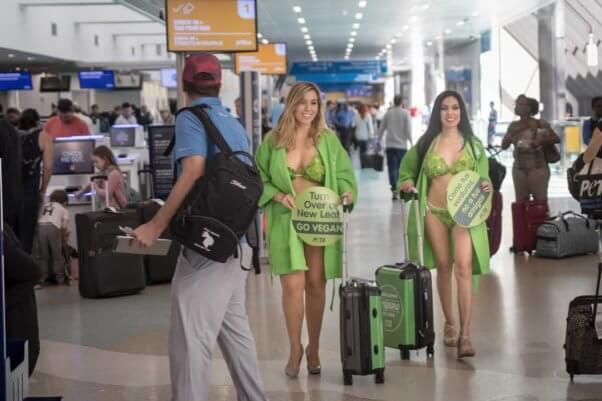 Lettuce Ladies arrive in Cuba