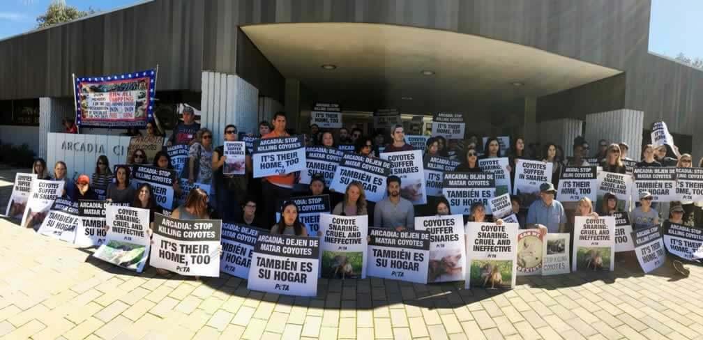 Arcadia violated the California Environmental Quality Act
