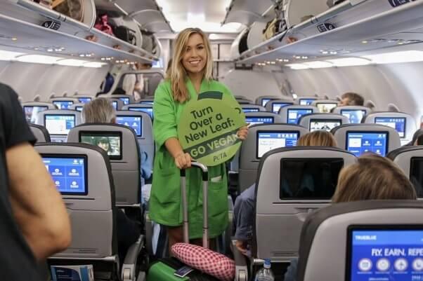 now boarding: lettuce ladies cuba trip is underway